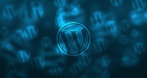 Mon premier Pluggin WordPress